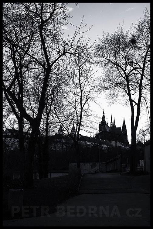 Pražský hrad, Belvedér, Praha